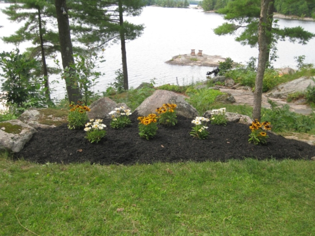 Flowerbed overlooking lake